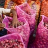 Onion price zooms to ₹200 a kilogram in Bengaluru