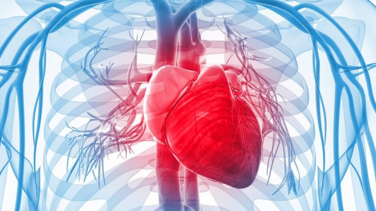 Risk of heart disease due to irregular sleeping habits: Study