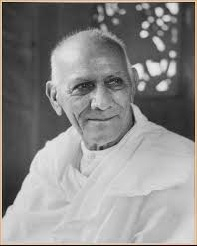 Swami Anand