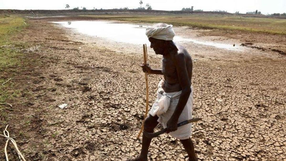 महाराष्ट्र: किसानों की मदद के लिए आवंटित पैसों का इस्तेमाल ही नहीं करती बीजेपी सरकार, सीएजी रिपोर्ट से खुलासा