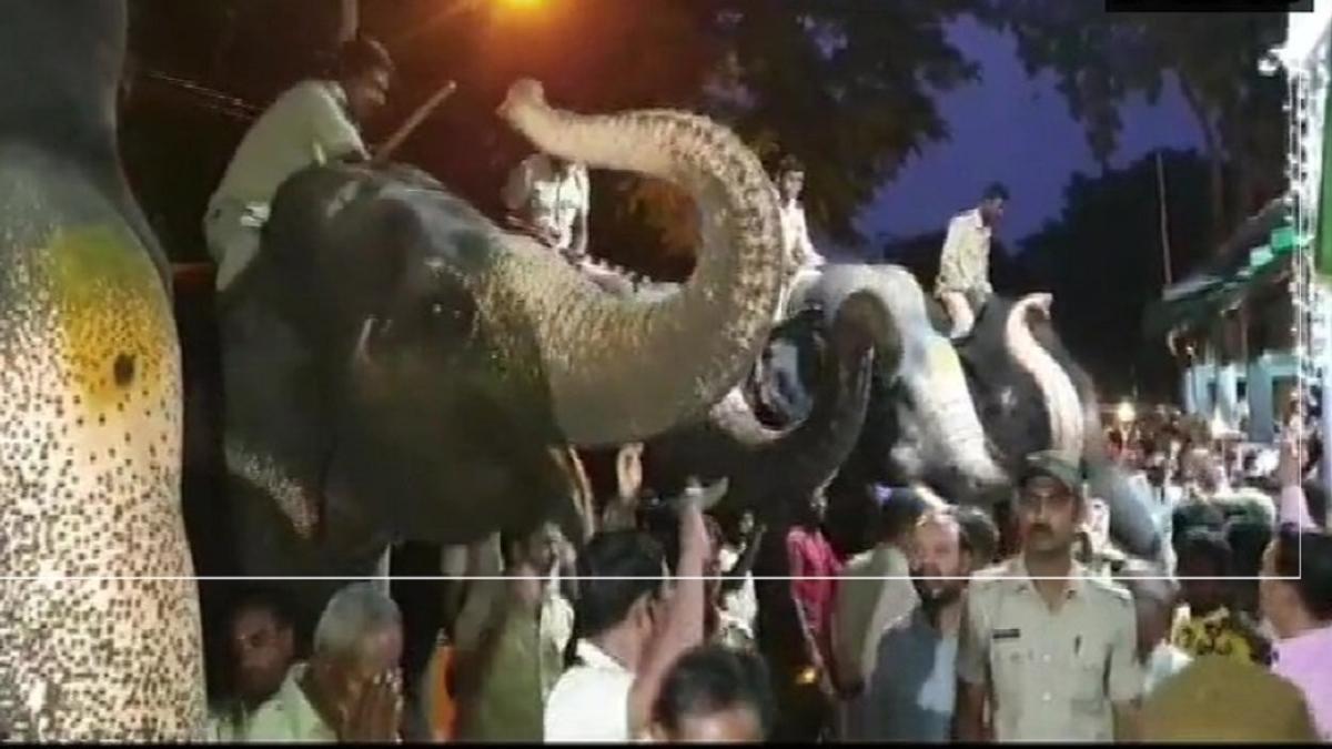 बड़ी खबर LIVE: कर्नाटक में दिखी साझी संस्कृति, दशहरा पर जंबू सवारी से पहले आशीर्वाद लेने दरगाह पहुंचे हाथी