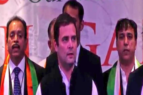 NRIs can contribute to nation, Congress: Rahul