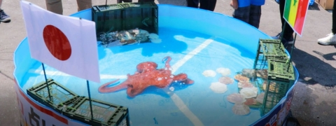 FIFA: Japan's 'psychic' octopus killed, 'sent to market'