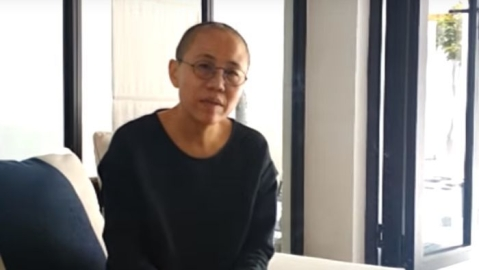 Dissident Liu's widow 'allowed to leave China'