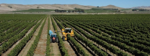 New Zealand looking to invest in agri services
