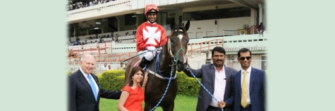 Star Superior wins classic race