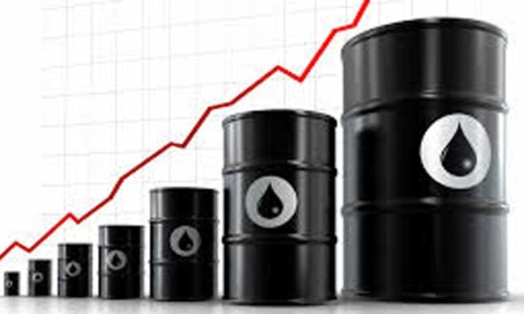 Oil import, debt financing to cost Rs1Lcr more