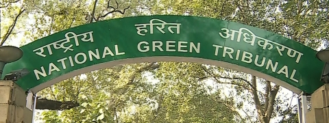 NGT gives directives for Western Ghat protection