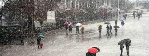 Snow and rain in Himachal regions