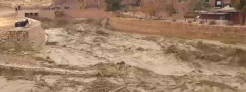 Flash flood in Jordan: Seven killed, tourists evacuated from Petra