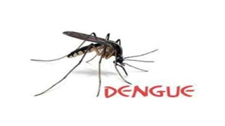 No vote, if, spread of dengue not contained; voters in Jodhpur threaten
