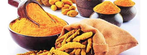 Sangli's turmeric gets official recognition with GI tag