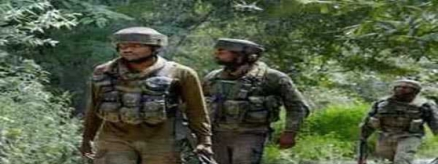 Two militants killed by SF in south Kashmir encounter