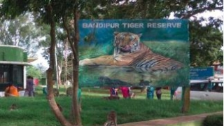 Illegal quarrying affecting Wildlife conservation around Bandipur National Park