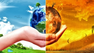 Climate change: What we can do to help?