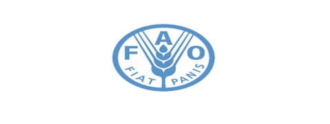 FAO Council to declare 2023 as International Year of Millets