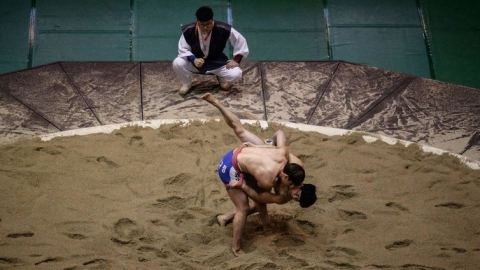Koreas win joint bid to recognise ancient wrestling as cultural gem