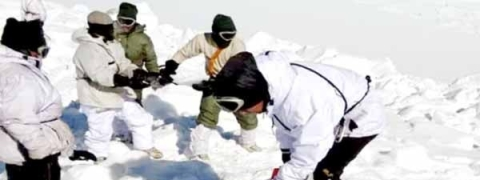 Khardung La avalanche: 8 bodies retrieved, search continues