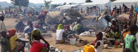 UN: 30,000 Nigerian refugees flee fearing Boko Haram threat