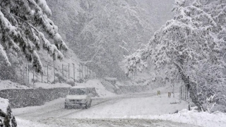 Srinagar turns white due to fresh snowfall