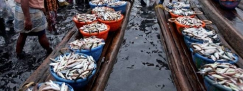 New Fisheries Policy: Minimum Support Price For Fish