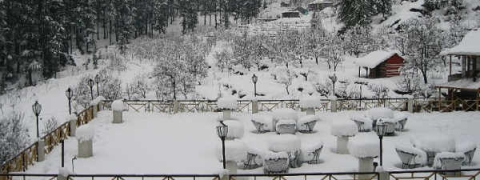 More snow in Manali, rain predicted