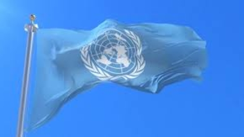 UN members call for actions on ensuring peacekeepers' safety