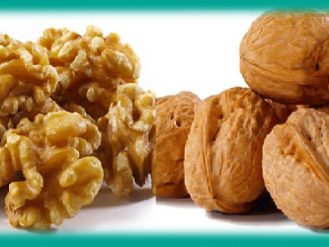 Nutty Times – Walnuts