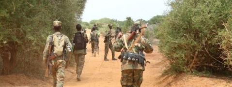 Somalia: 30 al-Shabab militants killed in joint operation