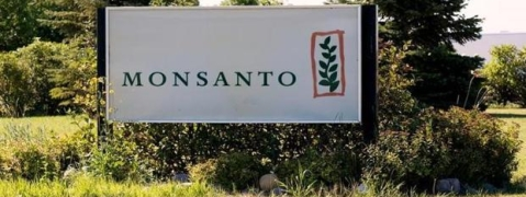Royalties for Monsanto GM cotton seeds cut for third year