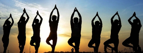 Yoga, AI in CBSC curricula