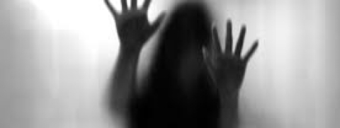 Lawyer's son booked for abduction,  rape