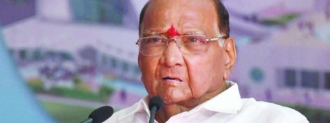 NCP chief Sharad Pawar not to contest Lok Sabha elections