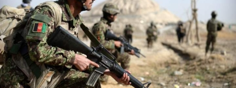 Afghan fighting claims over 50 lives in 24 hours