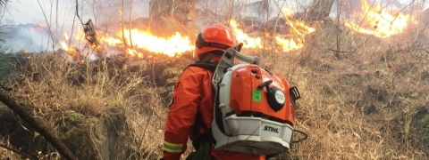 30 killed while firefighters extinguish fire in China's mountains