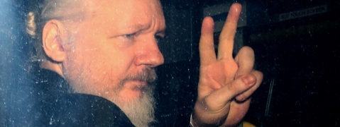 Assange must face Swedish justice if country asks, say MPs