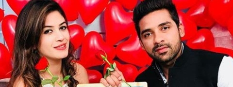 Puneesh-Bandgi reject Zee 5 reality show due to prior commitments