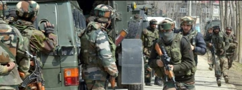 Encounter ensues between militants, security forces in Tral forest