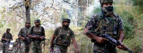 Top HM commander among 3 militants killed in Shopian encounter