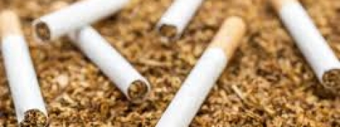 Tobacco sector in terms of total economic value generates at a whopping Rs 11,79,498 cr