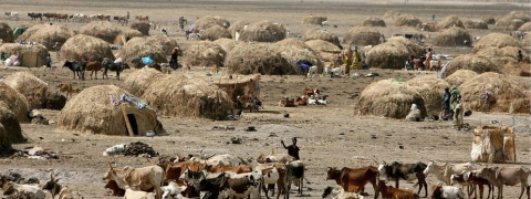 Concern over clashes between pastoralists and farmers in Central Africa