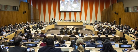 Nineteen new members elected to ECOSOC