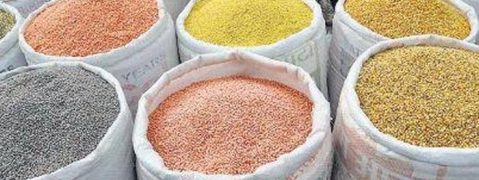 No shortage of pulses; Govt monitoring prices: Paswan