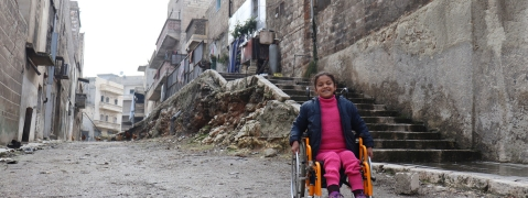 Protect persons with disabilities in conflict zones: UNSC