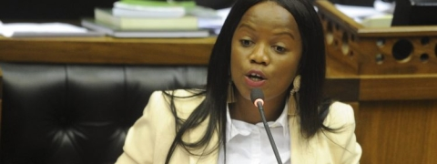 South Africa MP 'racially abused' at tourist site