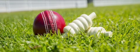 Teenage cricketer dies after being hit by the ball during match