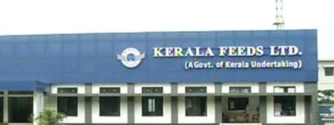 KFL steps in to feed cows, calves at 'goshala'