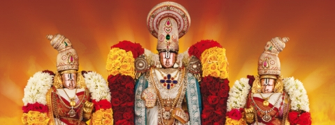 Privilege darshan to Sr Citizens, handicapped in Tirumala : TTD