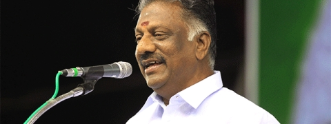 Panneerselvam ambivalent over 10 pc quota