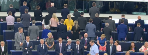 Brexit Party MEPs turn backs in EU Parliament